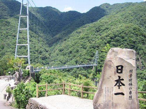 日本一の照葉樹林