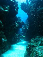 North_reef01