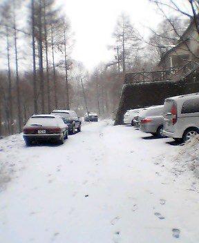 【速報】雪でした